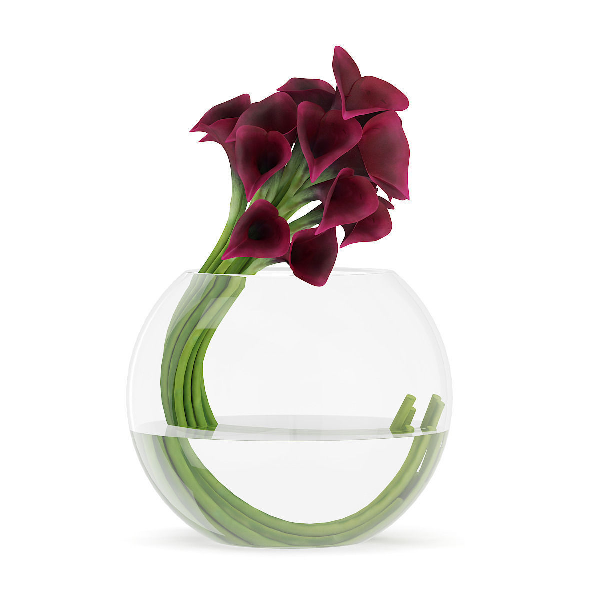 3d calla lilies in spherical vase cgtrader calla lilies in spherical vase 3d model max obj fbx c4d mtl 1 reviewsmspy