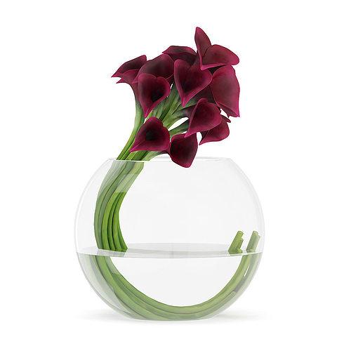 3d Calla Lilies In Spherical Vase Cgtrader
