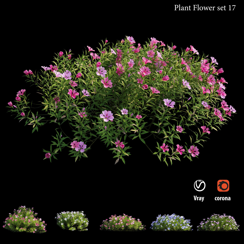 Plant Flower set 17