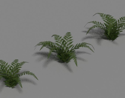 Green Fern Set 3D Model
