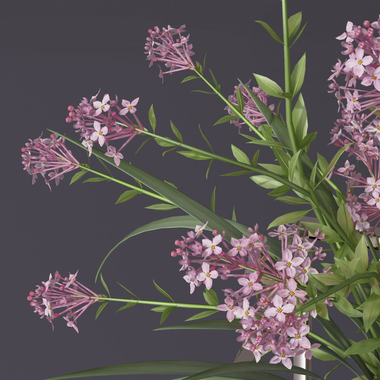 Realistic 4 colors lilac lily lavender Flower Bouquet and leaves
