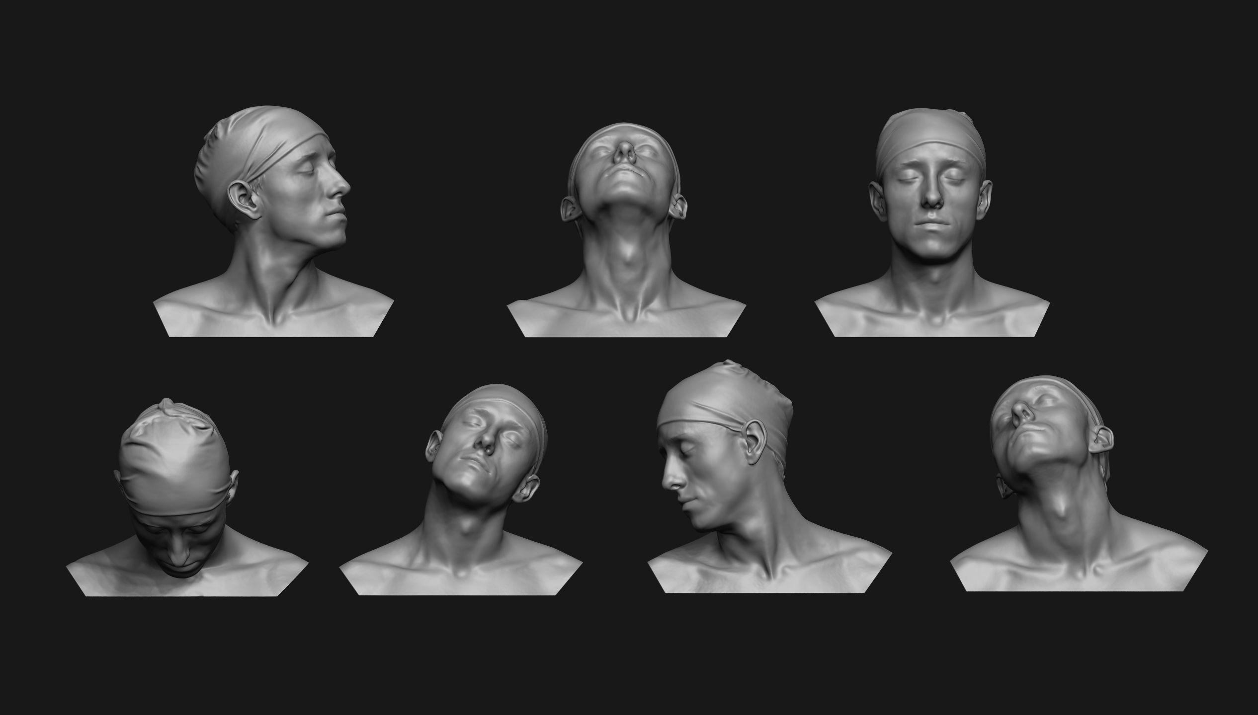 Neck Anatomy Reference Set