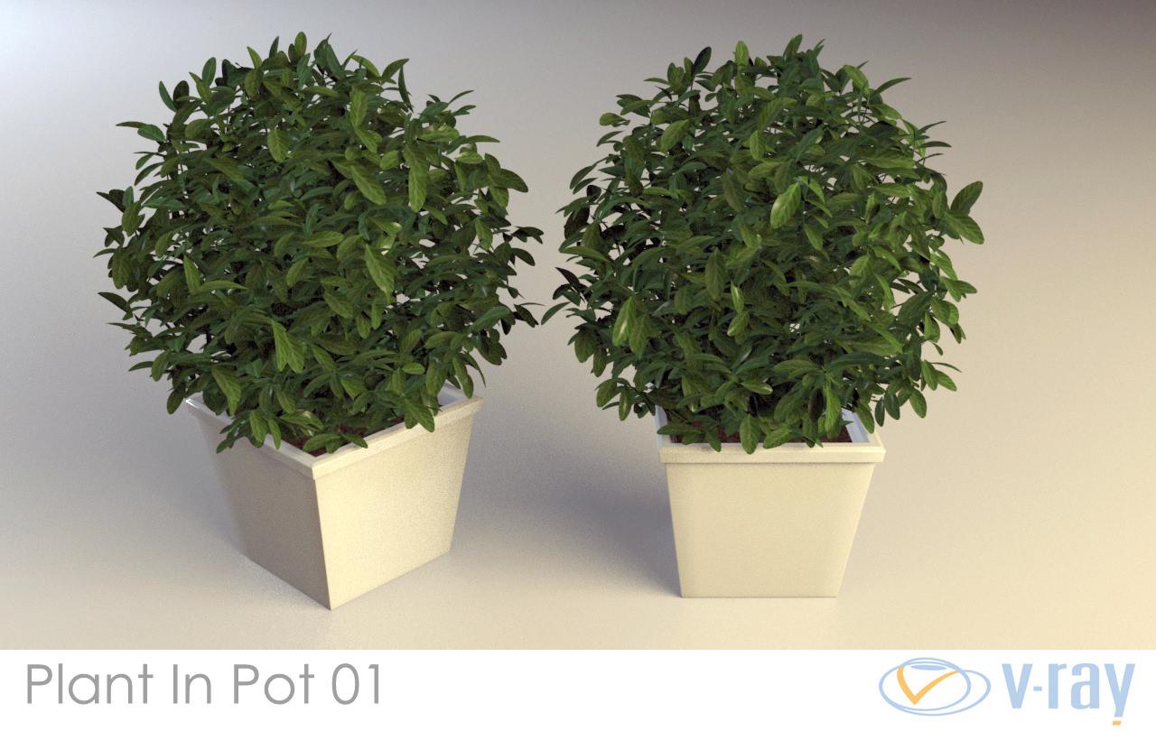 Plant in pot 01 3d model max obj fbx dxf dwg w3d for Plante 3d dwg