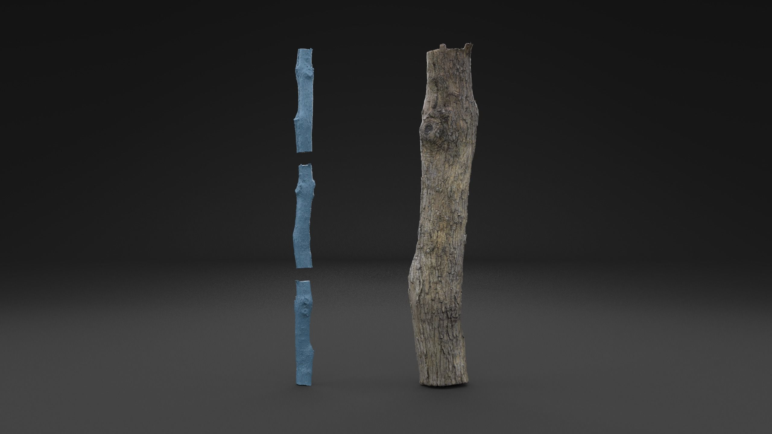 Scanned Piece Of Wood Log HIGH POLY