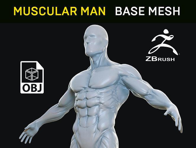 Muscular Man - Base Mesh