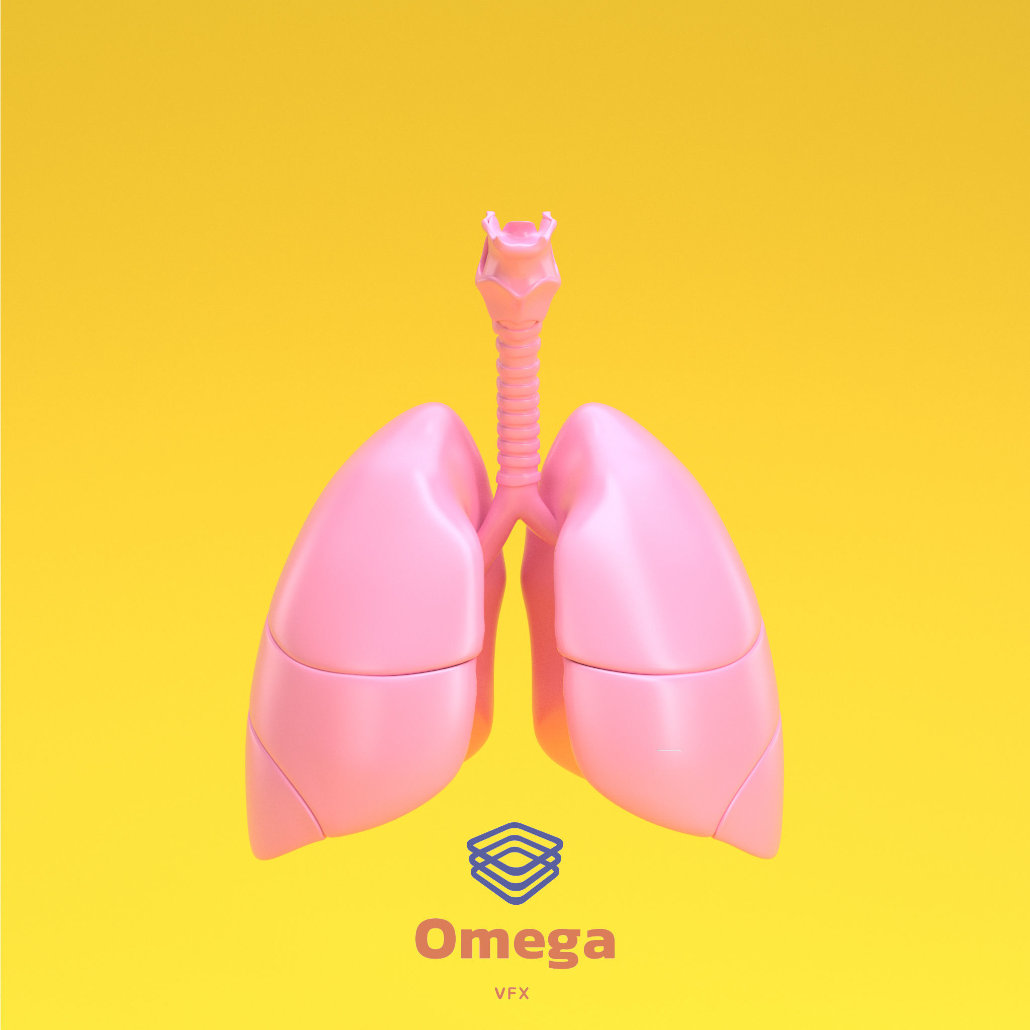Human Lung with Bronchia  3D model
