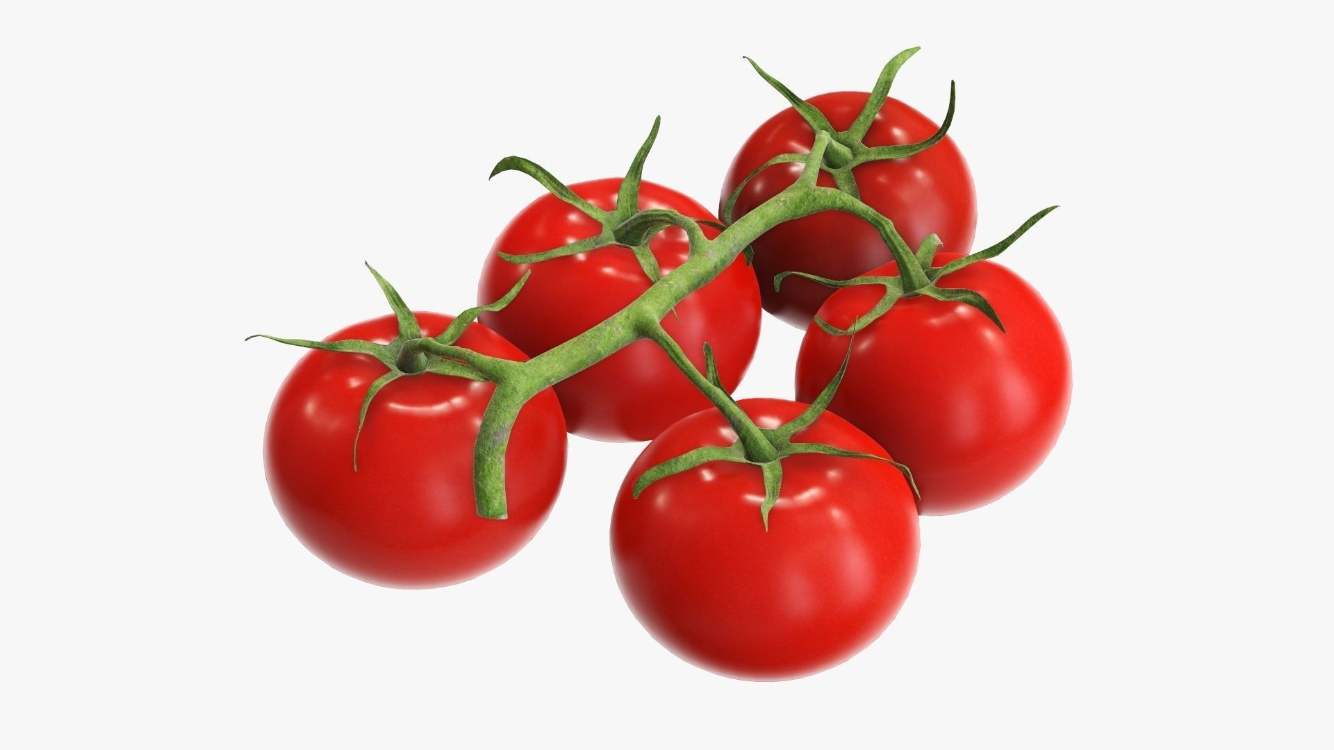 Branch with tomatoes 02