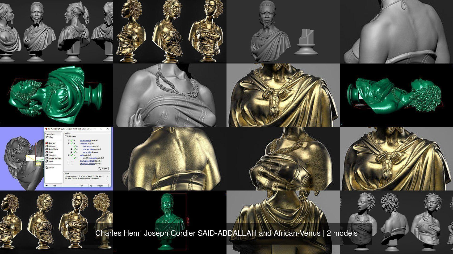 Charles Henri Joseph Cordier SAID-ABDALLAH and African-Venus