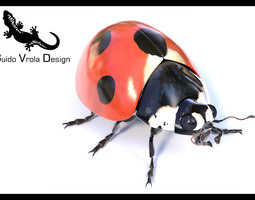 Grid_accurate_ladybug_3d_model_3ds_fbx_obj_blend_28d02052-344b-4dbc-8a41-8d72ed8068b0