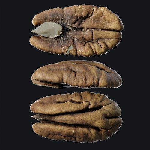 Pecan seed