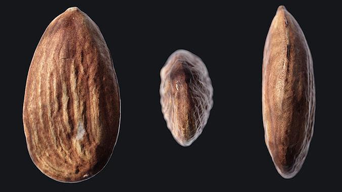 Almond C