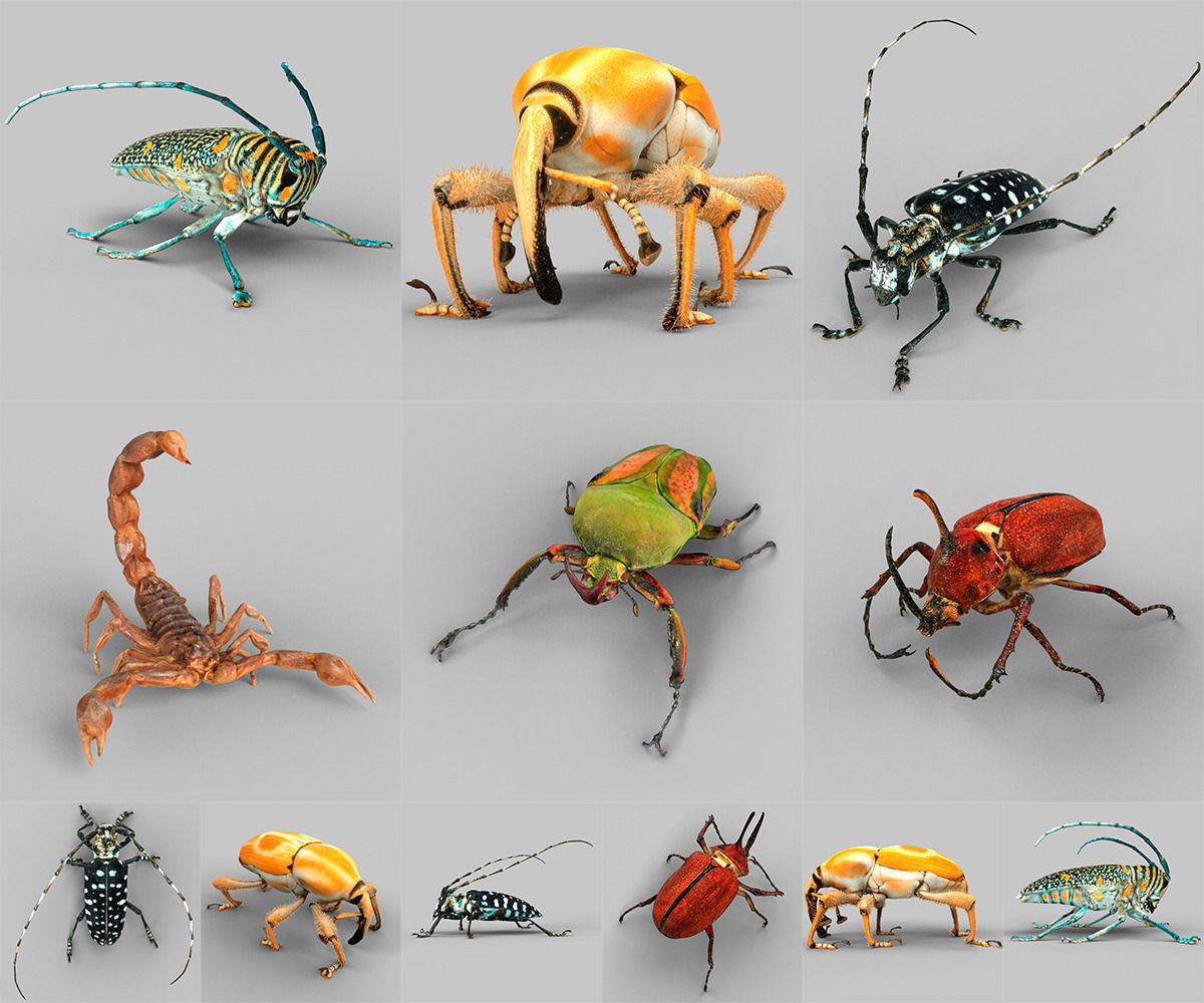 Insect Collection Vol 2