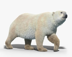 polar bear fur rigged 3d model rigged max obj fbx