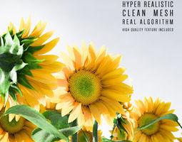 Sunflower wildlife-challenge 3D