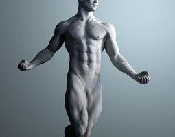 Anatomical Sculpture of a Man 3D Model