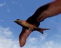 Folcan - Bird 3D model