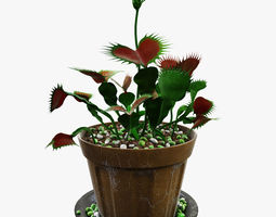 Venus flytrap 3D