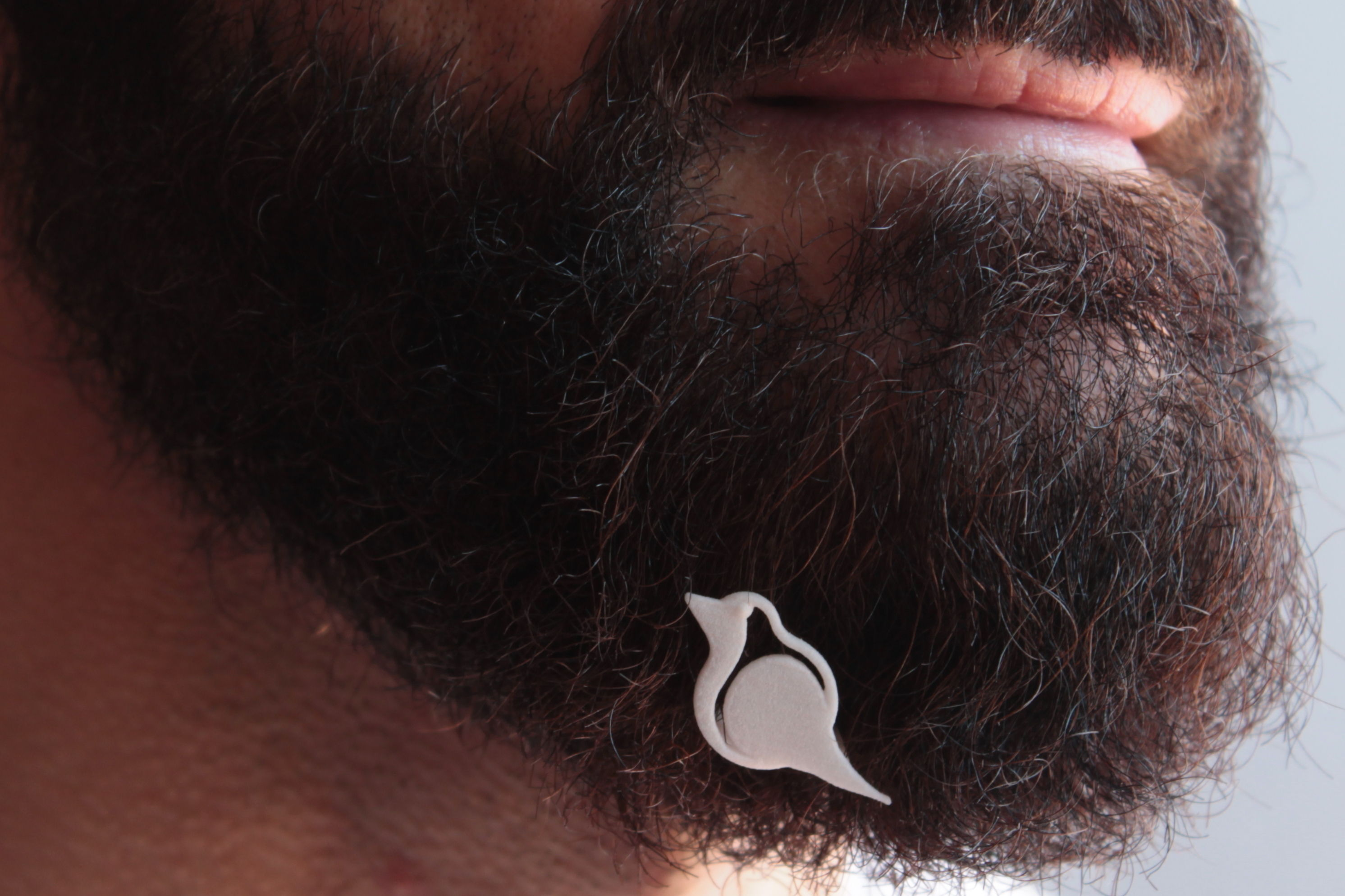 Robin for beard - front wearing