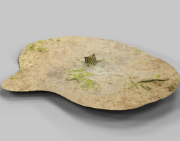 3D asset Ground cover Pine