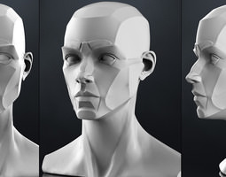 Planes of the head - Female 3D Model