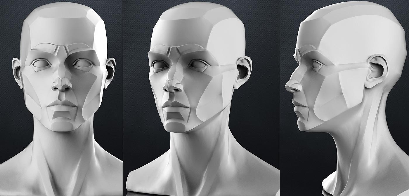 https://img-new.cgtrader.com/items/25564/planes_of_the_head_-_female_3d_model_obj_b4bf82c1-e33b-4658-8447-4b8aca81d217.jpg