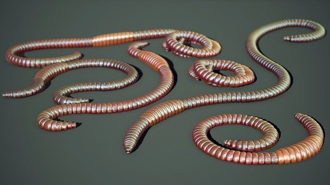 Earthworms Rigged PBR