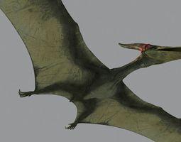 3D model Pterodon