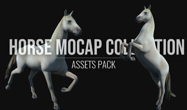 Horse Mocap Collection