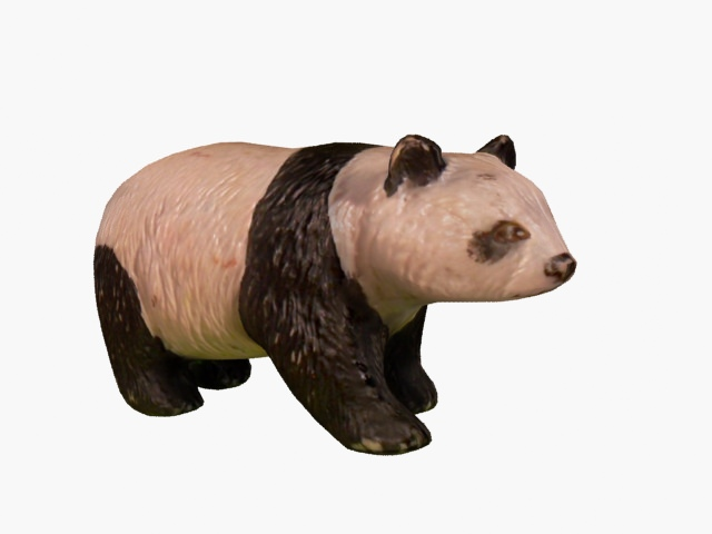 Share Pandra bear teen model