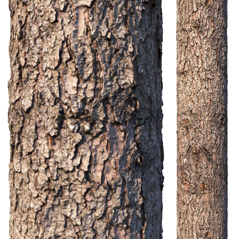 Spruce bark material