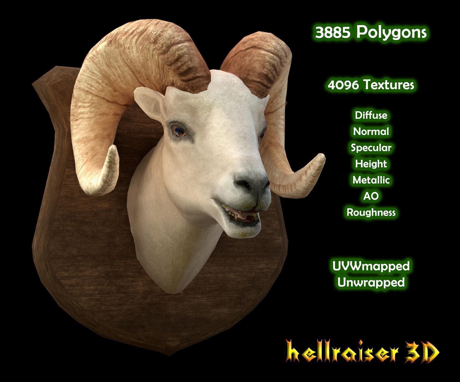 Ram Head - PBR - Textured