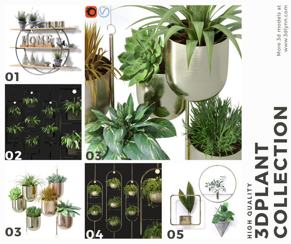 Top Hanging Plant Pots Collection