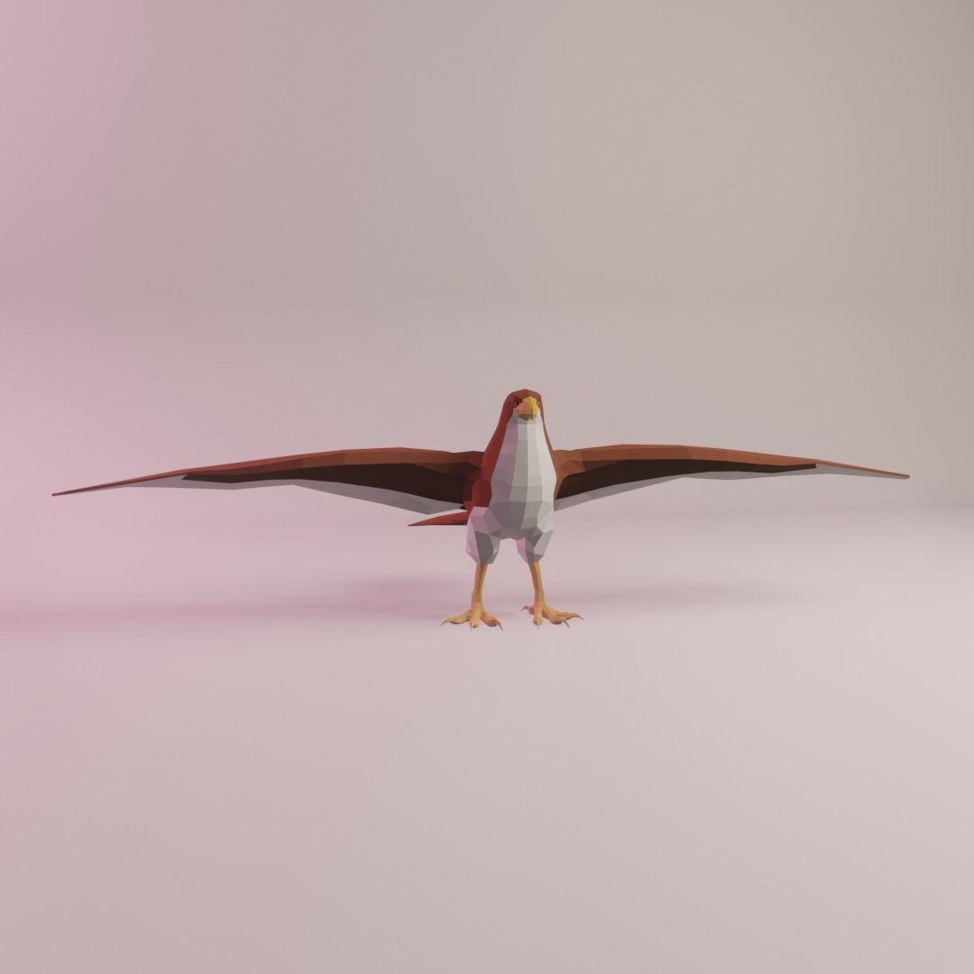 Mildred the Sharp-shinned Hawk