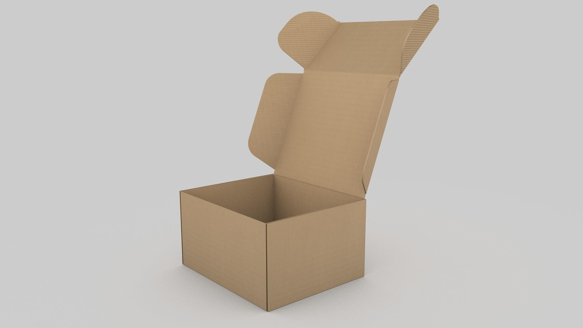 Adjustable and Rigged Box Package