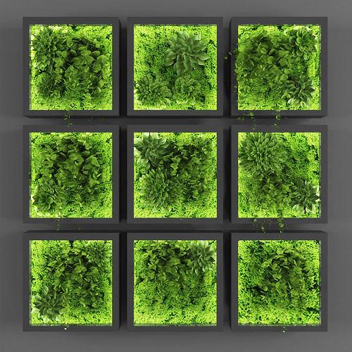 Vertical garden 93