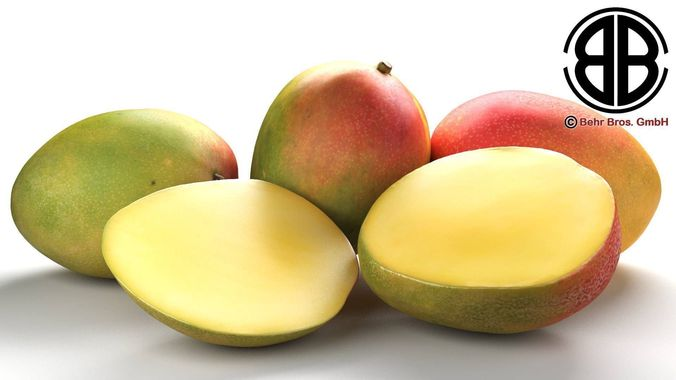 photo realistic mangos 3d model max obj 3ds fbx c4d lwo lw lws 1