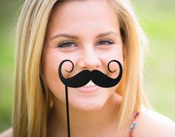 Mustache Mustache Stick 3D print model sprag
