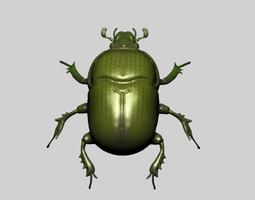 Beetle 3D
