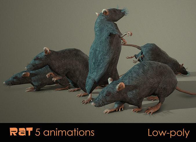 Rat five animations pbr