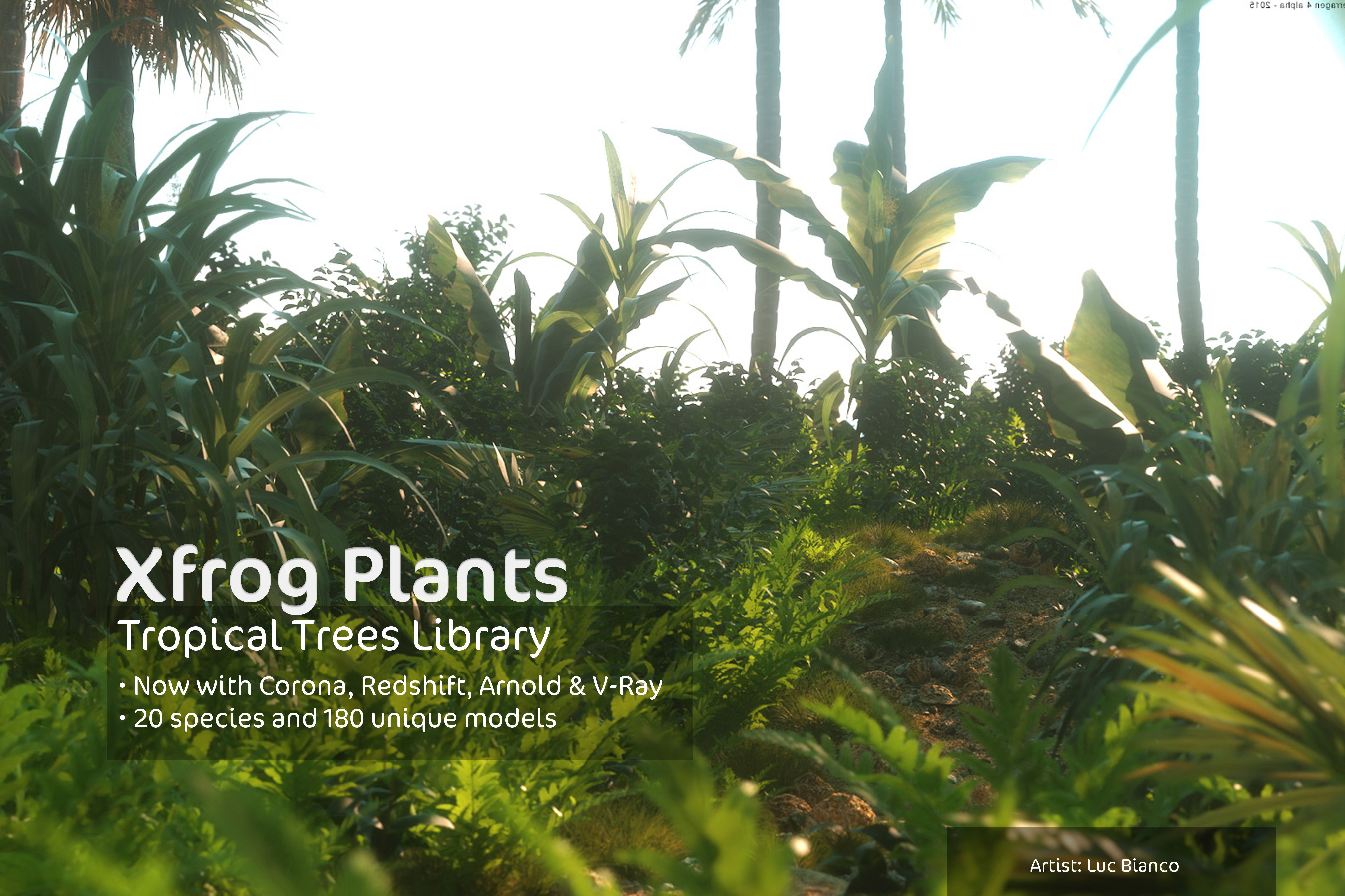 2020 XfrogPlants Tropical Trees Library