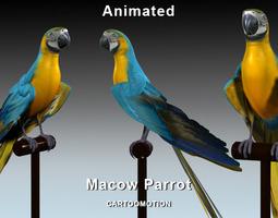 Blue Macaw Parrot 3D model