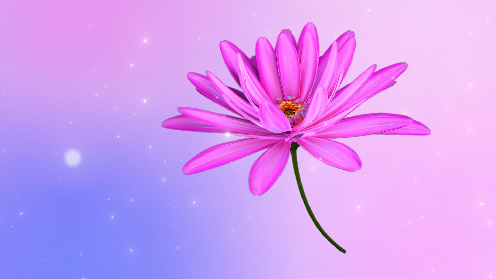 3d Daisy Flower Animated