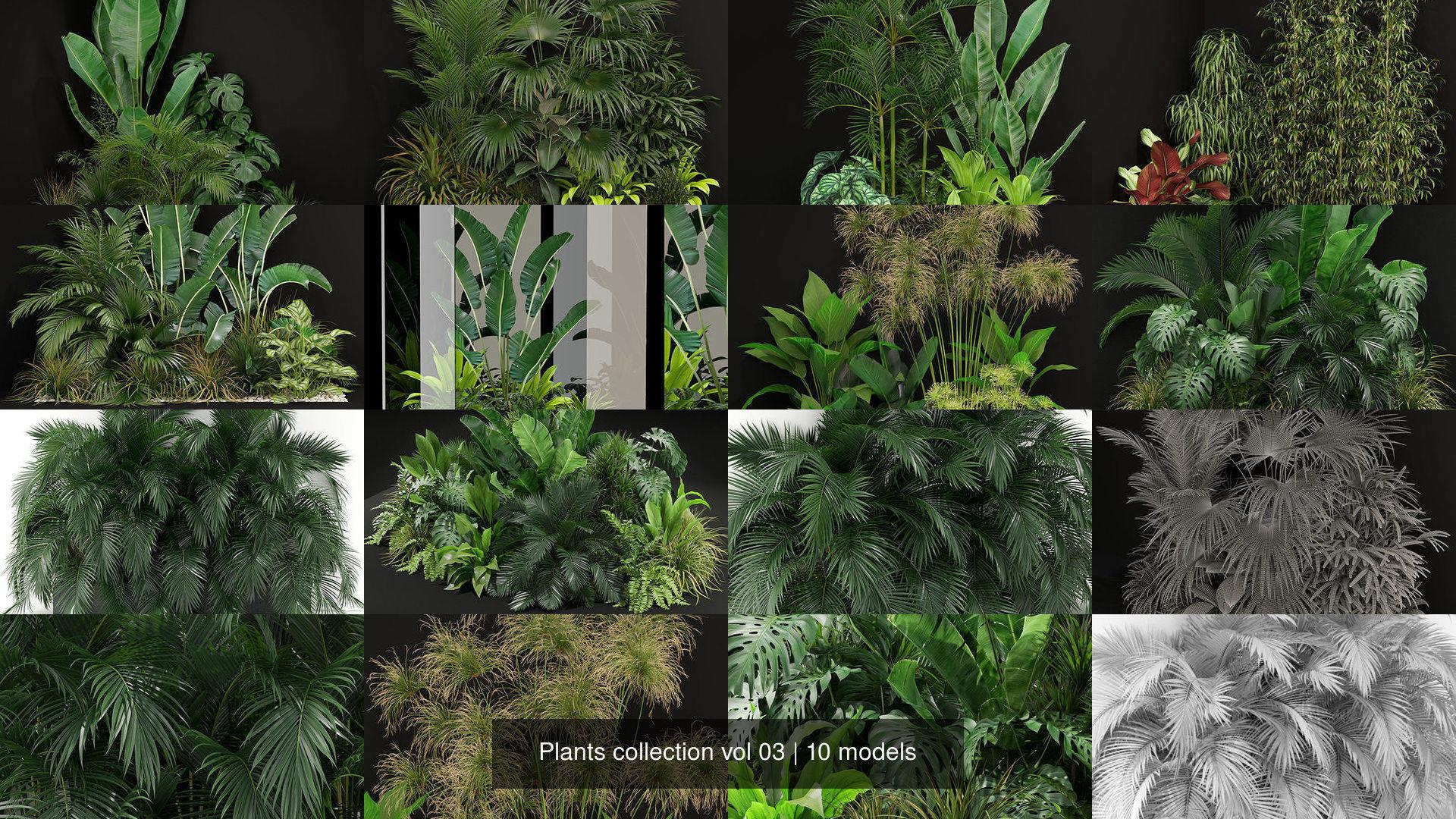 Plants collection vol 03
