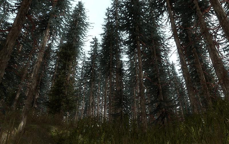 Free Pine Trees Sample Model Free 3d Model Game Ready