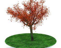 colourful autumn tree 3d