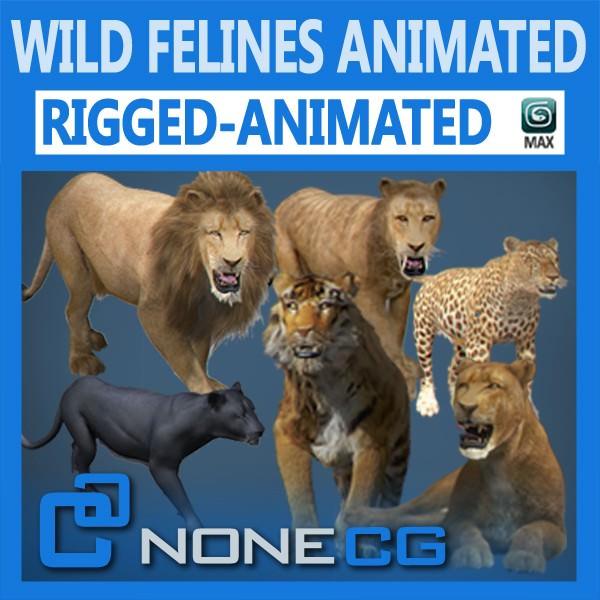 Pack - Wild Felines Animated