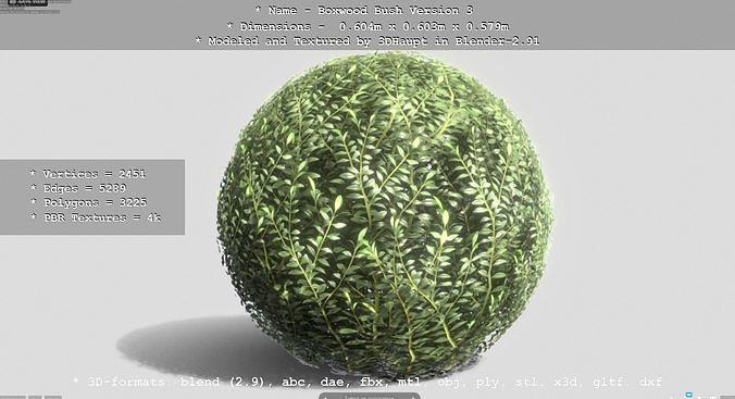 Low-Poly Boxwood Bush Version 3