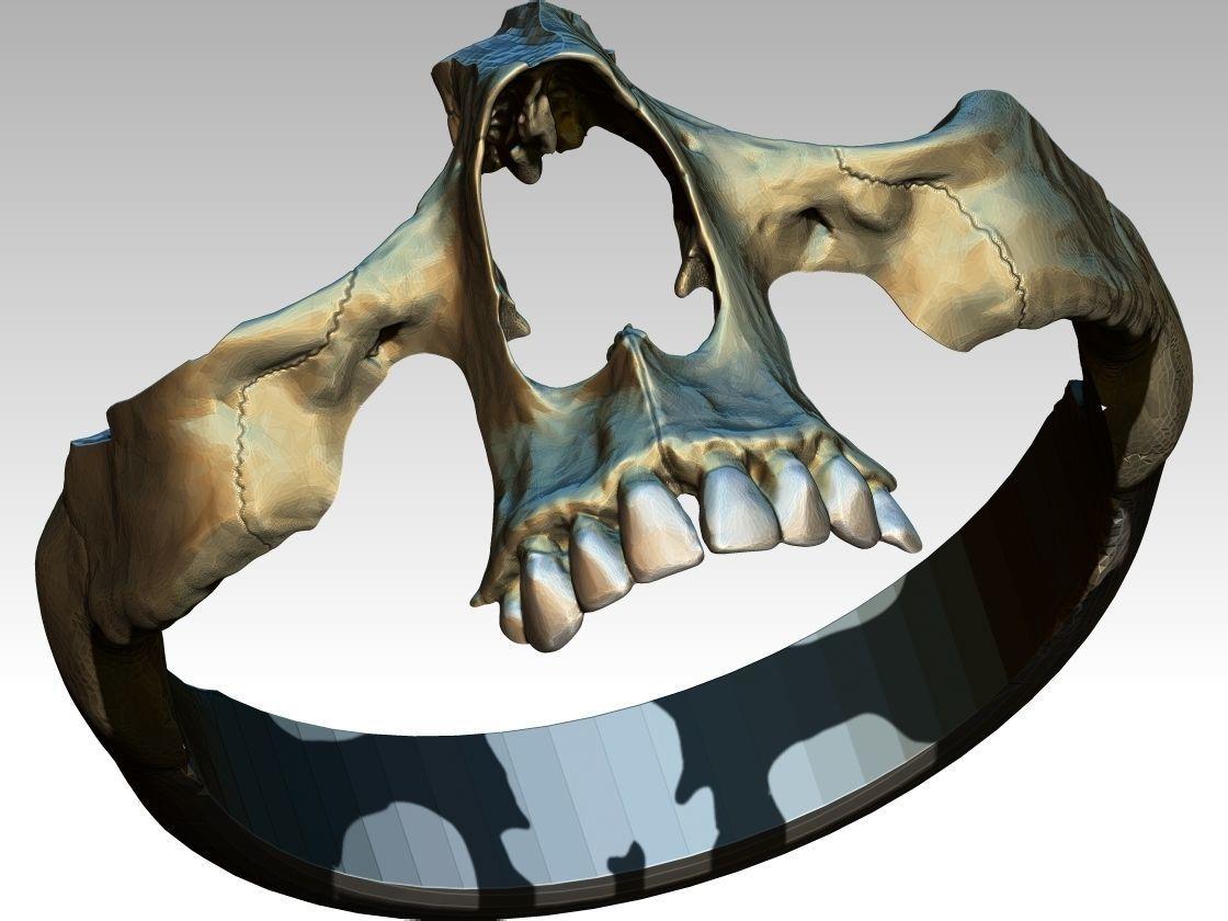 Part  Skull Ring Men Woman Gothic