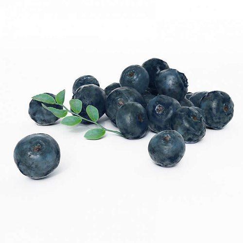 cluster of fresh blueberries 3d model obj mtl 1