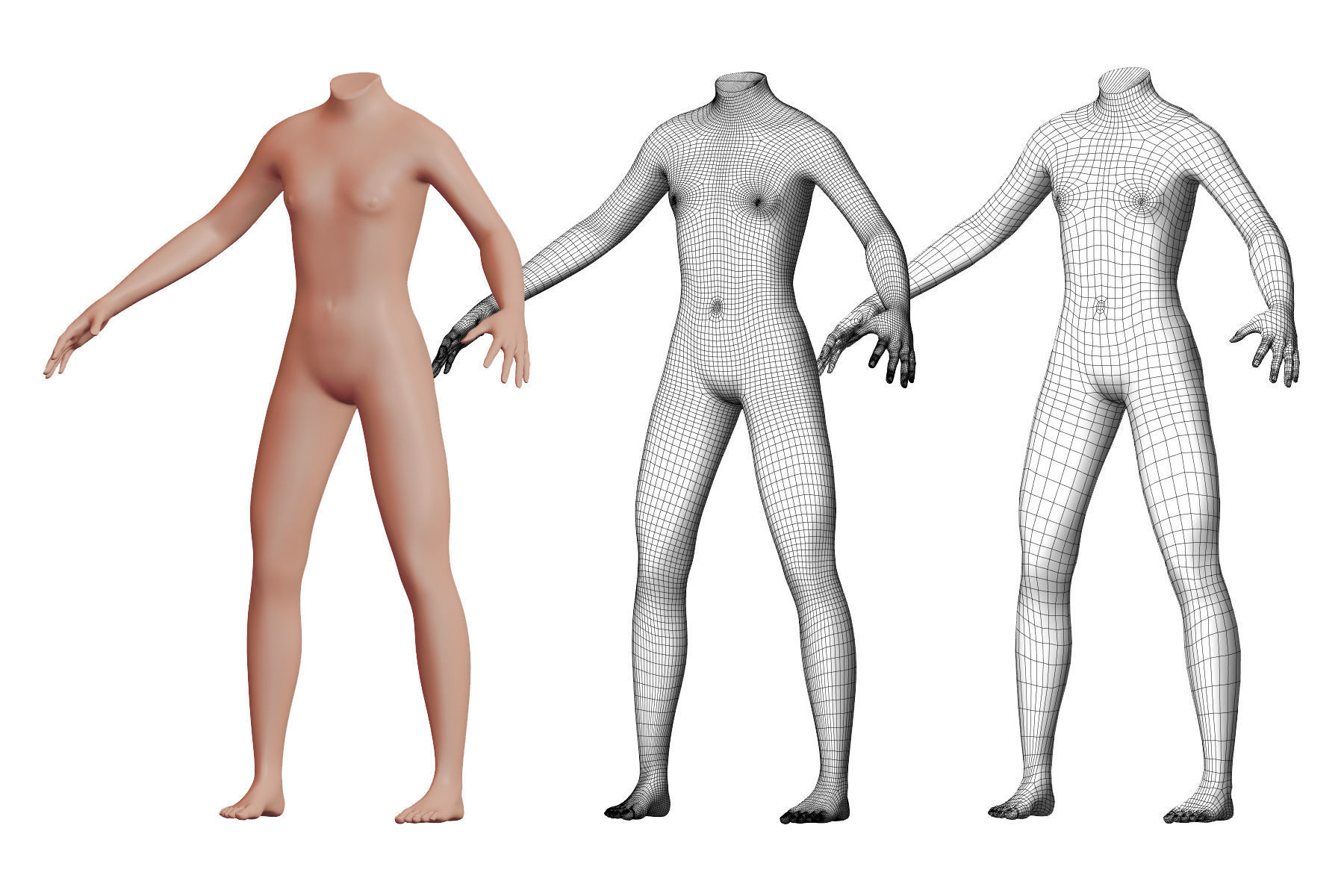 Character 23 High and Low-poly -  Body male